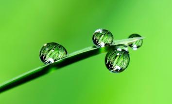 環境・CSR分野